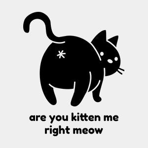 Katze T-Shirt cool